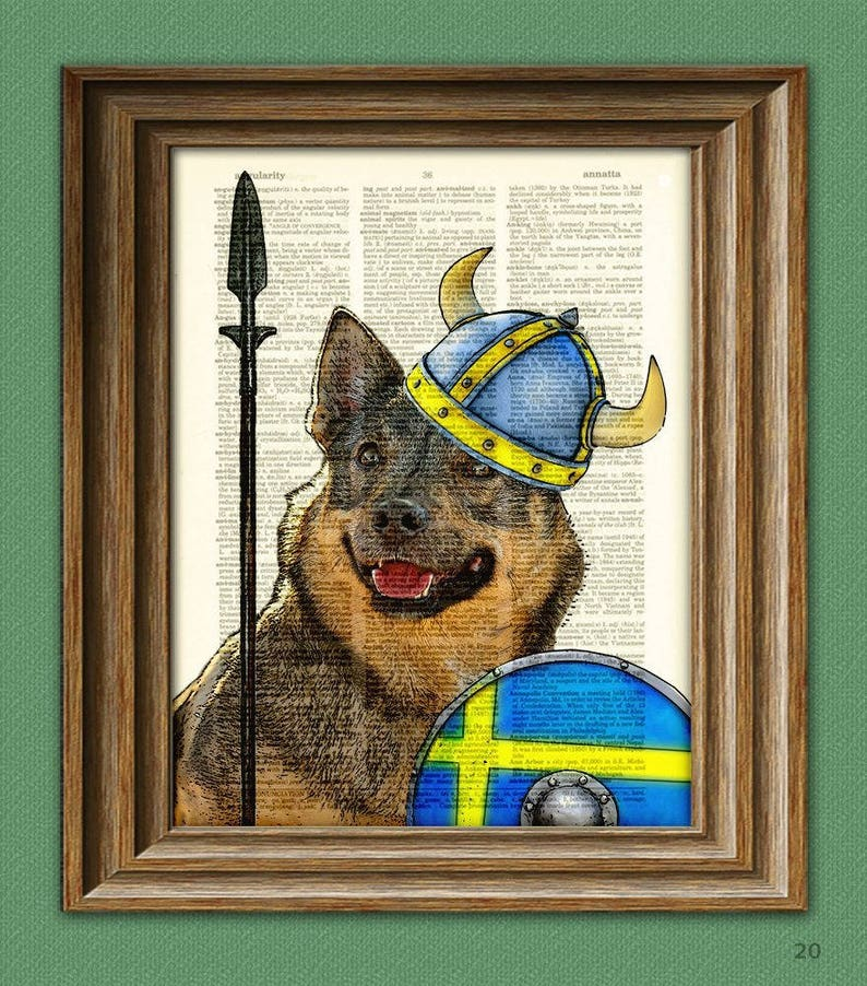 Swedish Vallhund Dog illustration Freja the Viking image 0