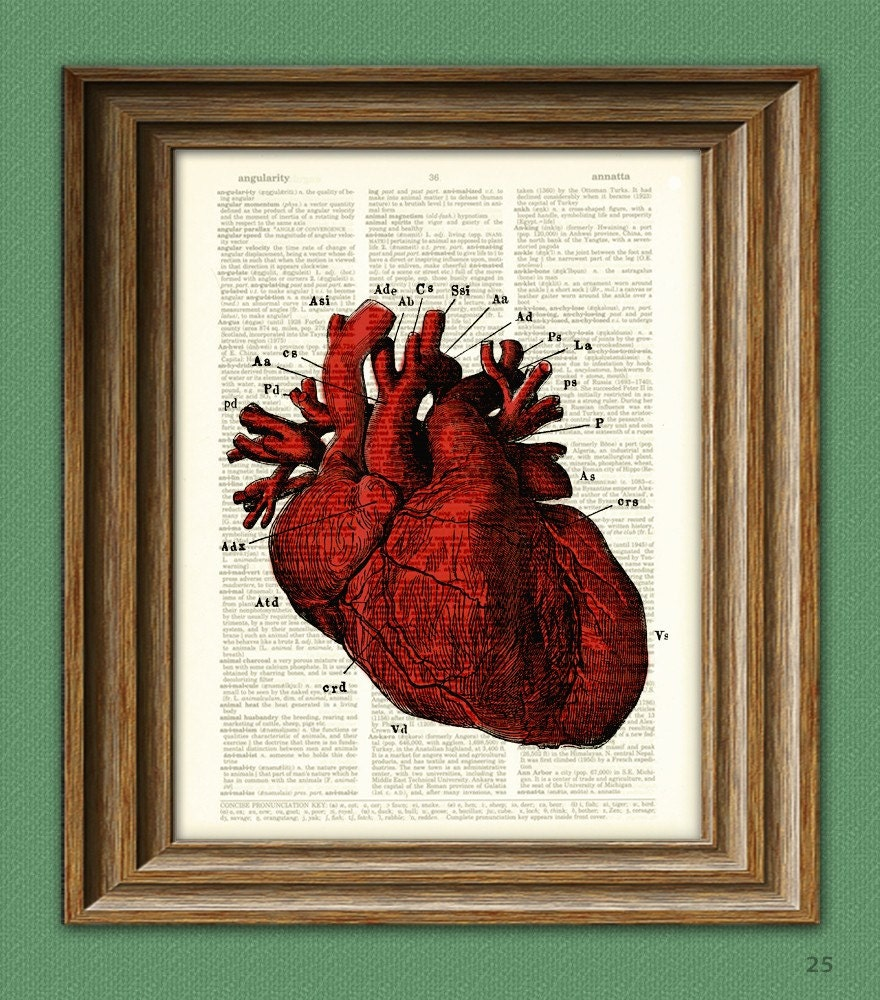 It's a RED HUMAN HEART diagram beautifully upcycled | Etsy