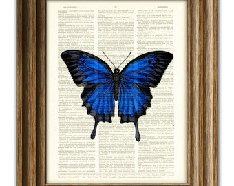 Beautiful Blue Butterfly illustration beautifully upcycled dictionary page book art print