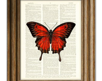 Beautiful Red Butterfly illustration beautifully upcycled dictionary page book art print