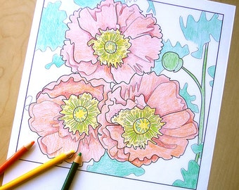 poppies coloring page, poppy coloring sheet, printable coloring pages, flower art download, adult coloring page