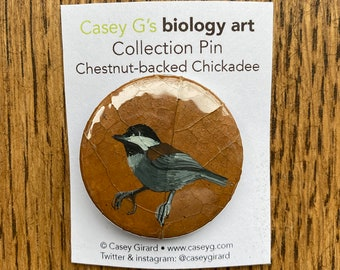 1 Collection Pin - Chestnut-backed Chickadee