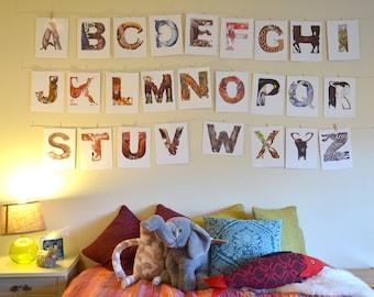 Full Set of 8 x 10's of Animals in Alphabet