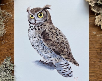 Individual 8 x 10 Owl Print