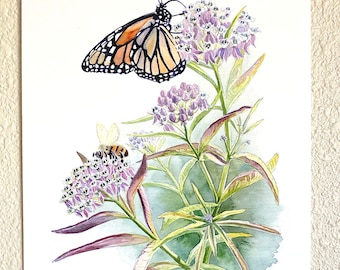 Milkweed, Monarch, Honey Bee
