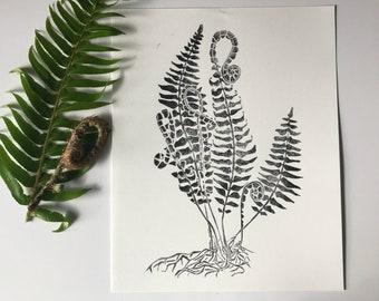 Fiddlehead Fern - Block Print - Black and White - Art Print