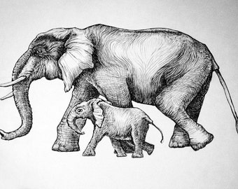 Signed Print of my Original Ink Drawing -  Elephant Mamma and Baby