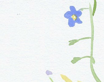 broadleaf plantain, forget-me-nots and rowan, small original forest watercolor drawings (free shipping)