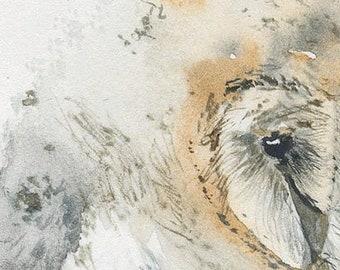 sleepy owlet, original watercolor drawing for nursery (free shipping)
