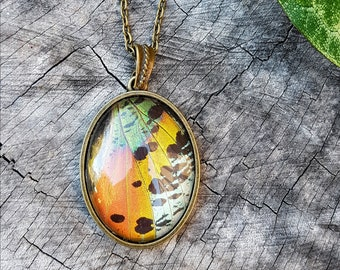 REAL Sunset Moth Wing pendant, brass necklace rainbow black
