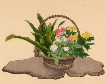 1935 IKEBANA JAPANESE FLOWER arrangement print original vintage botanical lithograph - rose & yellow chrysanthemum in moribana basket