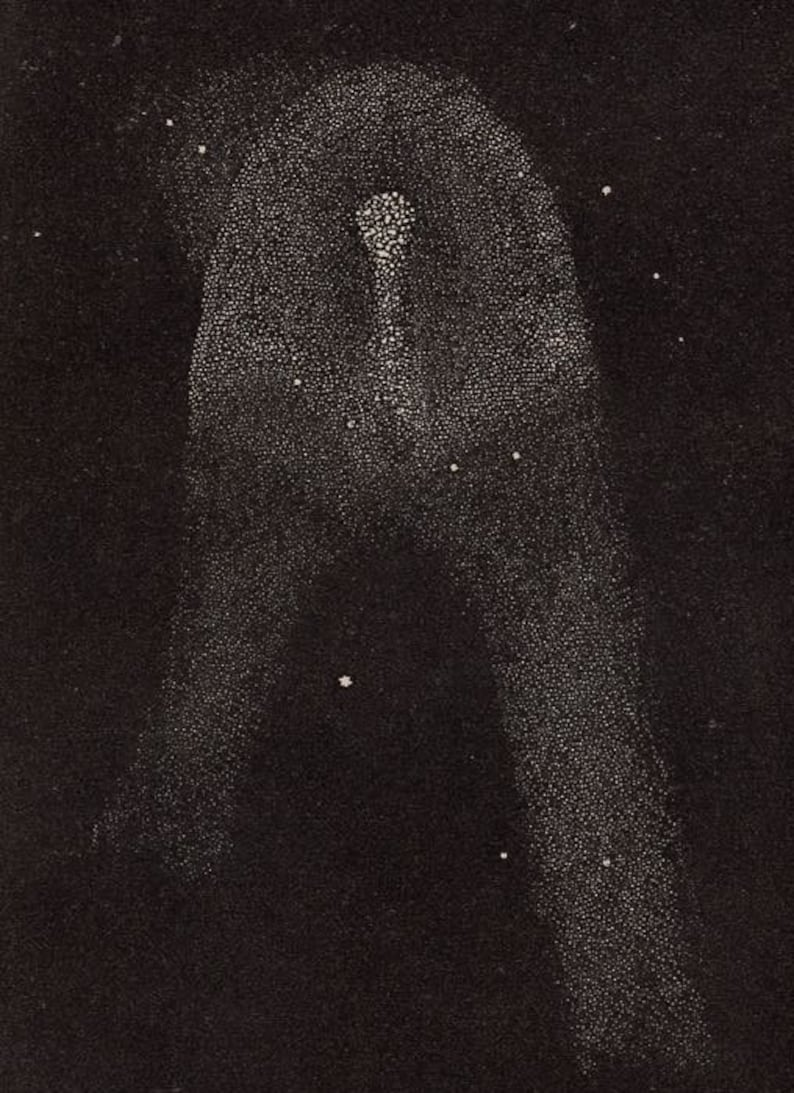 c as figured by Sir John Herschel at the Cape of Good Hope 1848 HALLEY/'S COMET print original antique rare astronomy celestial lithograph