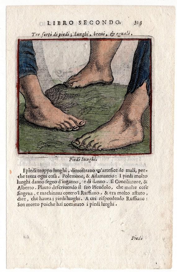 1560 Feet Human Anatomy Original Antique Medical Engraving Etsy