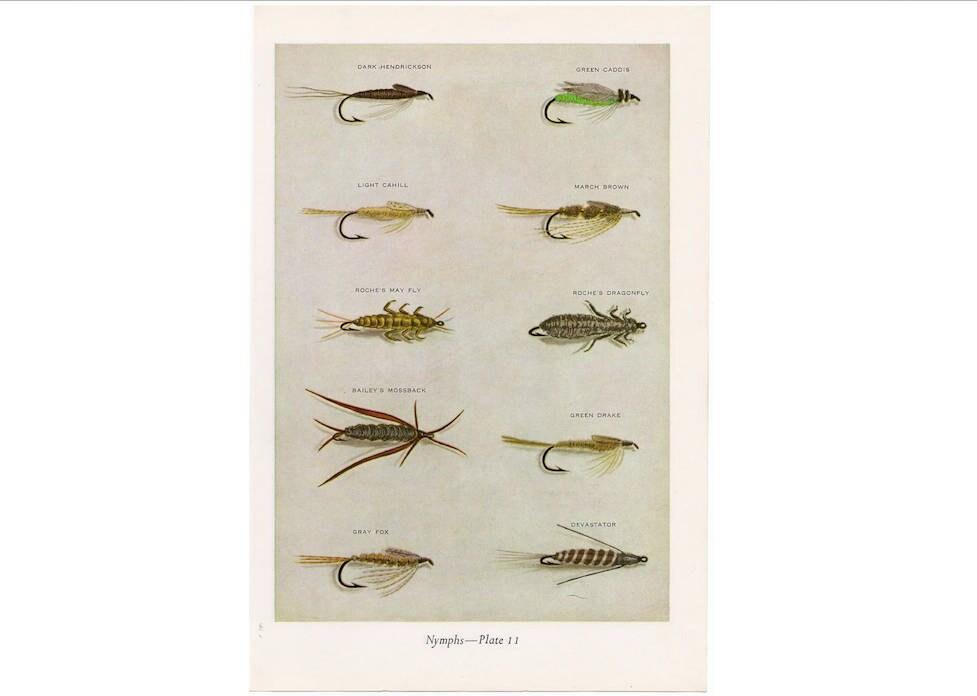 c. 1963 Nymphen Fliegenfischen-Lithographie   Etsy