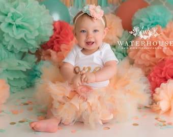 Birthday Tutu Dress Outfit   Baby Girls 1st Birthday Outfit   Cake Smash Dresses   Peach Gold Mint Birthday Party   Baby Shower Gifts