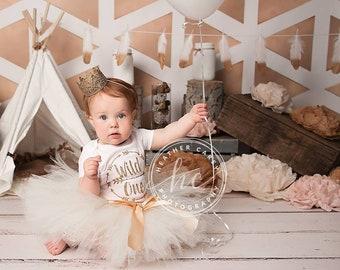 Wild One Birthday Girl Outfit Tutu Dress Baby Girl 1st Birthday Outfit Baby Tutu Birthday Dress Baby Girls Cake Smash Outfits Birthday Tutu