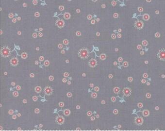 Moda Manderly, 1 Yard, Fine Quilt Fabric, Manderly Line, Franny & Jane for Moda, 47505 20, Gray, Light Red, Light Blue, White