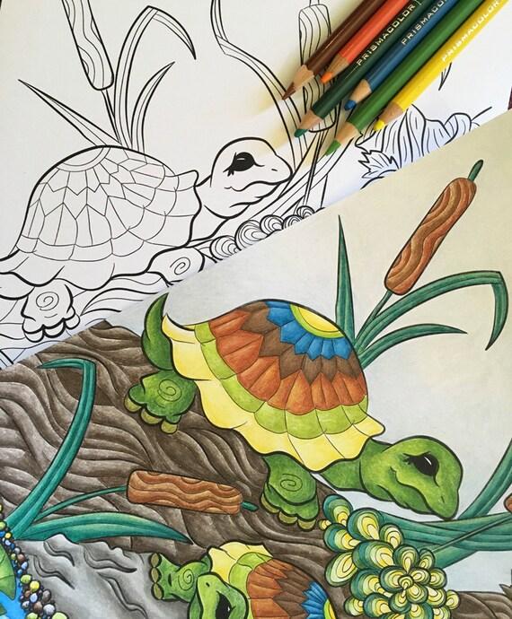 Schildkröten In Einem Teich Druckbare Ausmalbilder Etsy