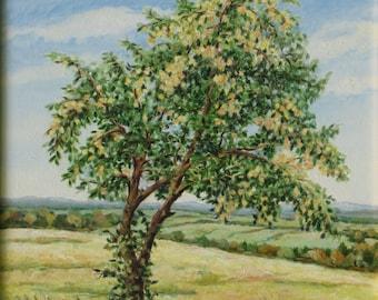 """Oil Painting, Original Painting, Apple Tree Painting, Landscape Painting, Country Painting, Audet, """"At the Apple Tree Hight"""", 18x19"""