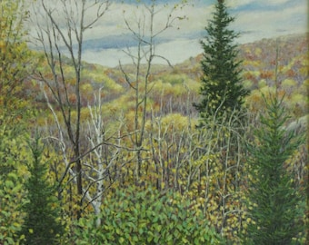 """Art & Collectibles Oil Painting Original Appalachian Landscape Canada By Audet """" The Canada Geese Were Passing By, ch Ast Bury, Waterville """""""