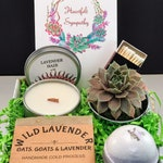 Sympathy Succulent Gift Box, Sympathy Gift Box, Sympathy Gift Basket, Sorry For Your Loss, Thinking Of You, Care Package