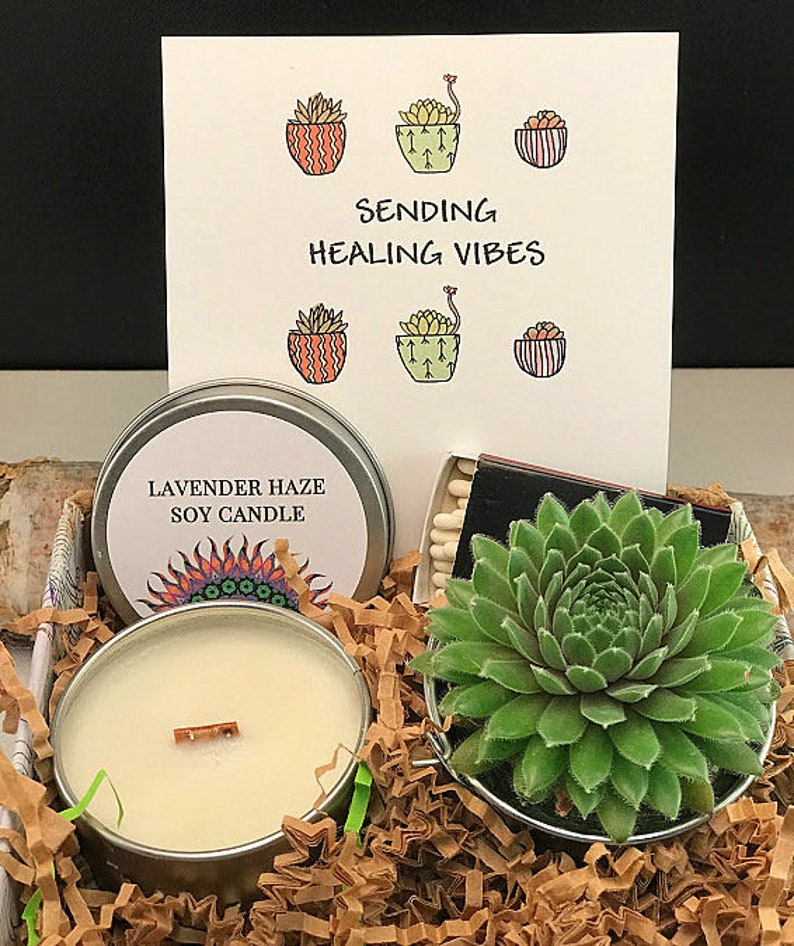 Sending Healing Vibes Succulent Gift Box Thoughts of you image 0