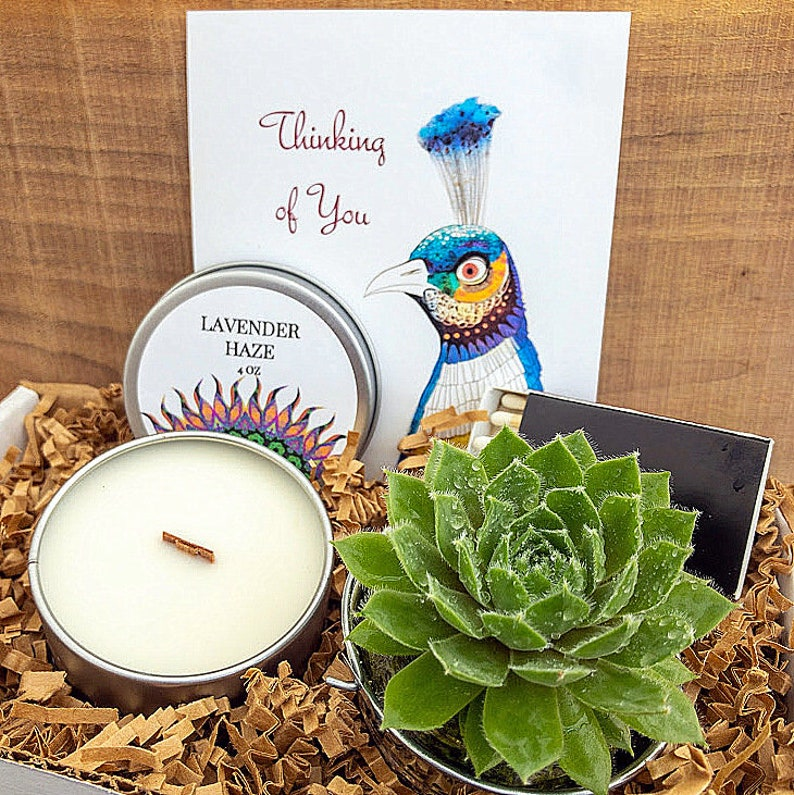 Thinking of you Succulent Gift Box Live Succulent Wood Wick image 0