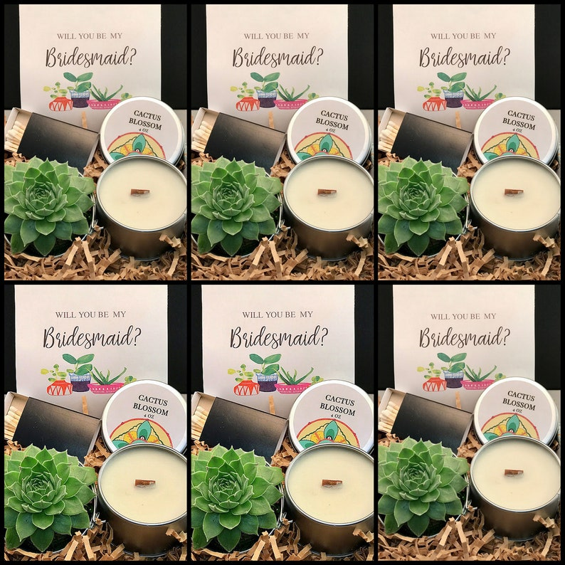 SIX Pack Bridesmaid Proposal Gift box Live Succulent Gift image 0