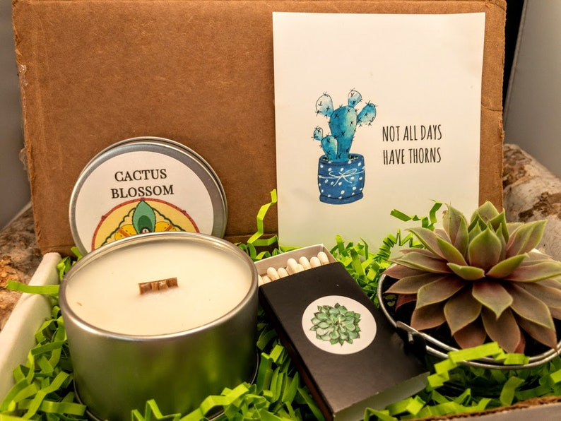 Not all days have Thorns Succulent Candle Gift Box Live image 0