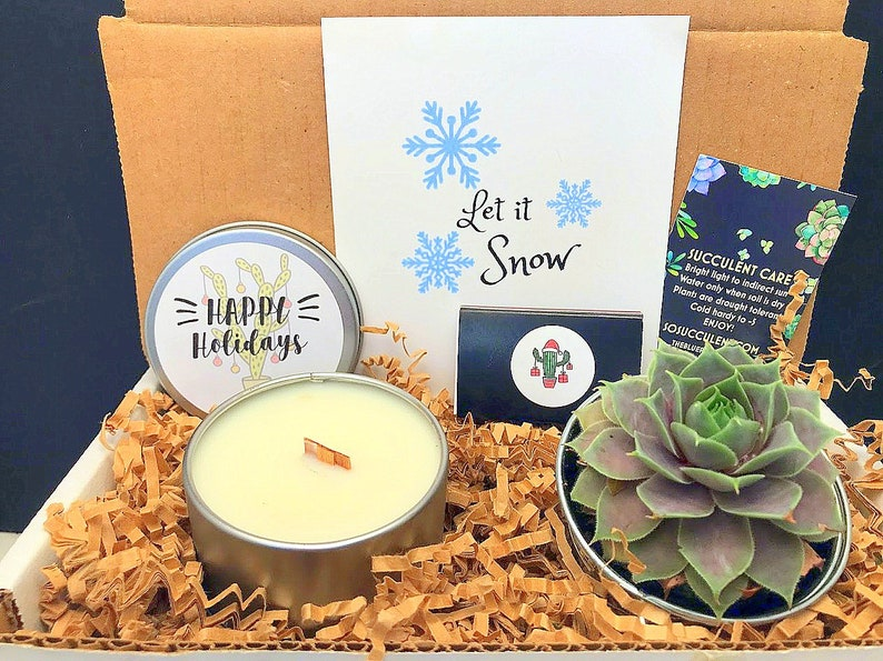 Christmas Succulent and Wood Wick Soy Candle Gift Box FAMILY image 0
