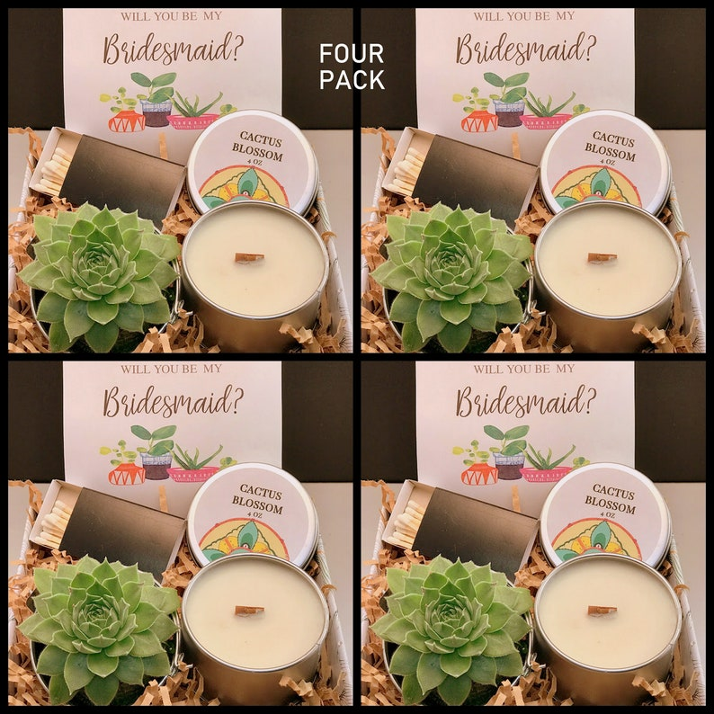 FOUR Pack Bridesmaid Proposal Gift box Live Succulent Gift image 0