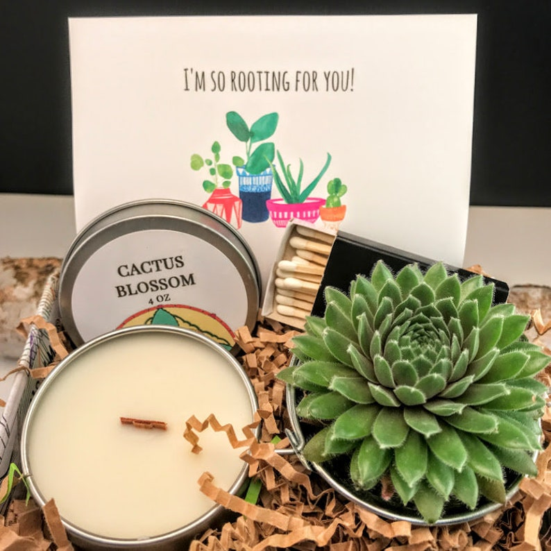 So rooting for you Succulent Gift Box Thoughts of you Gift image 0