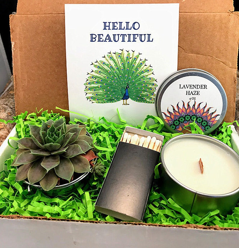 Hello Beautiful Succulent Gift Box College Care Package Best image 0