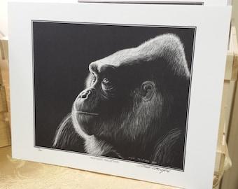 Gorilla Scratchboard Print