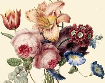 antique bouquet of peonies pink roses fleur de lys lilies tulips illustration digital download