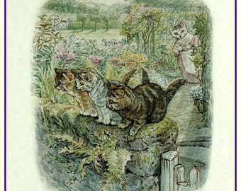 antique victorian beatrix potter nursery rhyme illustration tom kitten DIGITAL DOWNLOAD