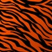 Raheem Wood reviewed Orange Zebra/Tiger Print/ Zebra Print Scarf/Rectangle Scarf/Square Scarf