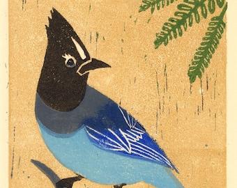 STELLER'S JAY, Bluebird, Blue Jay, Bird Lover Gift Idea, Birdwatching Bird Art - Original Hand-Pulled Linocut Art Print 5 x 7