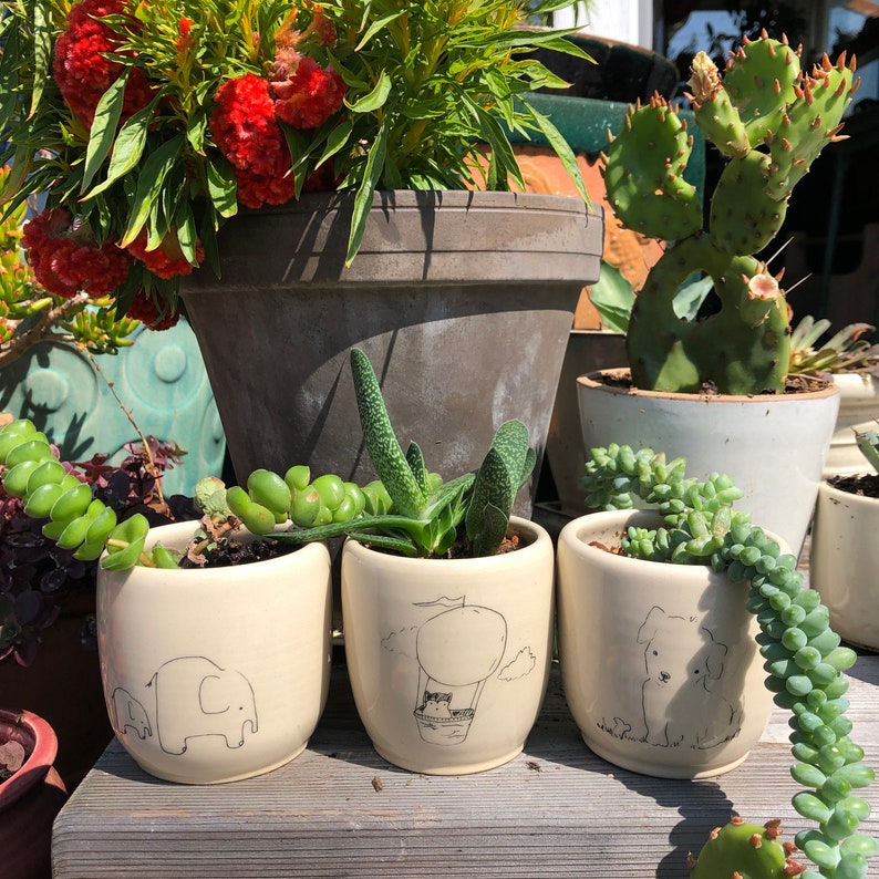 hummingbird by kata golda handmade ceramic cup or planter