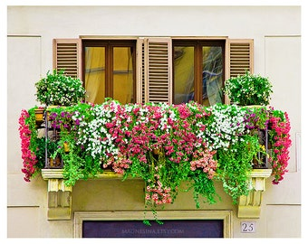 Rome, Italy photography, flowers, balcony, Piazza Navona, windows, shutters, travel photography for beautiful home decor, 8x10, 8x12