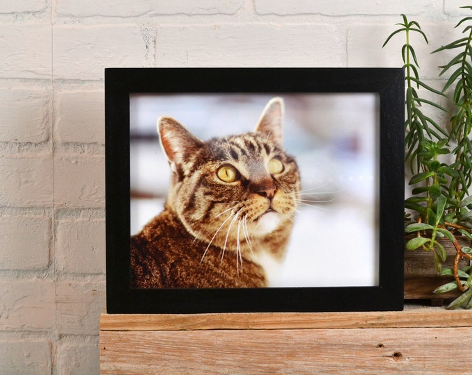 8x10 Picture Frame in 1x1 Flat Style with Solid Black Finish - IN STOCK - Same Day Shipping - Rustic Solid Wood Frame 8 x 10