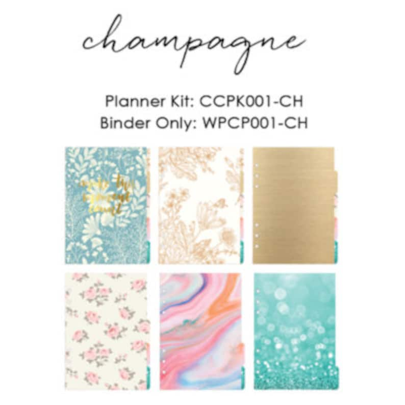 d09ed9523e6 Champagne Webster s Pages Color Crush Personal Planner Kit