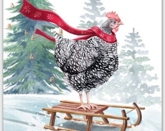 Sledding Chicken Christmas Card Set Barred Rock Hen on Sled w/ Red Scarf Funny Cute Holiday Paper Greeting Cards 100% Proceeds to Charity