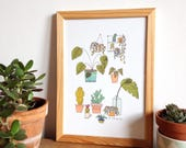 Plants posters, indoor plants, cactus illustration