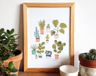 Plants, cactus poster