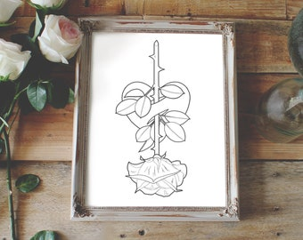 Printable Roses to Color - Bing Images | Rose coloring pages ... | 270x340