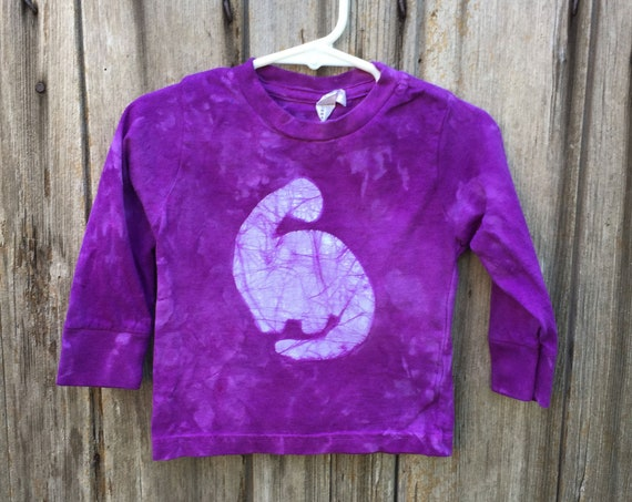 Purple Dinosaur Shirt, Kids Dinosaur Shirt, Boys Dinosaur Shirt, Girls Dinosaur Shirt, Long Sleeve Dinosaur Shirt (18 months)