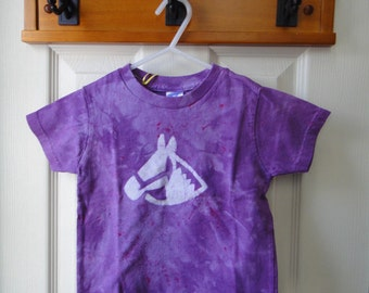 Kids Horse Shirt, Girls Horse Shirt, Purple Horse Shirt, Boys Horse Shirt, Equestrian Shirt, Horseback Riding Shirt (2T) SALE