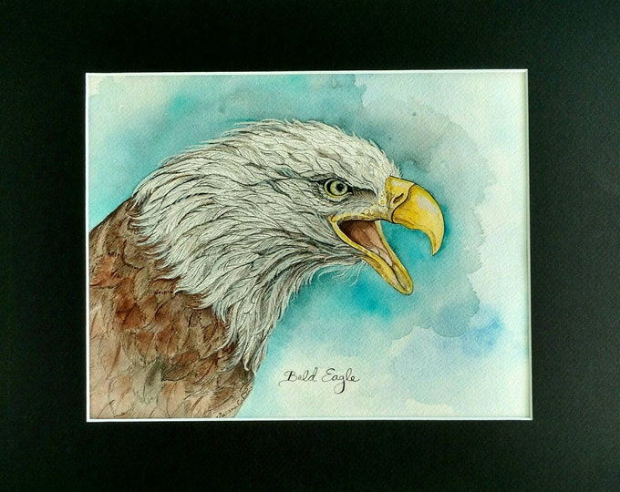 BALD EAGLE BIRD, Original Watercolor Painting on Paper by Susana Caban, Bird Art, Nature Study, Home Decor, Eagle Art and Design