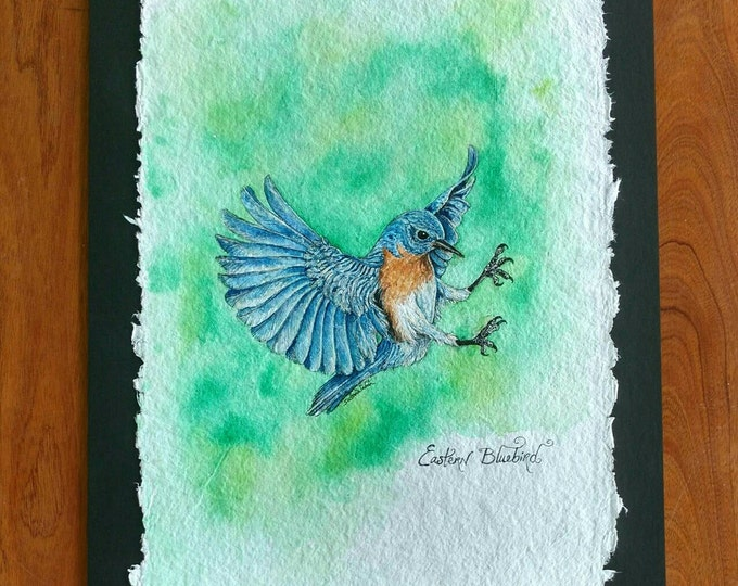 EASTERN BLUE BIRD, Original Bird Painting in Watercolor on Cotton Paper by Susana Caban,Bird Art, Nature Study, Home Decor, Blue Bird Art